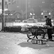 Jinan. A man selling fruits at night. Black and white photography.