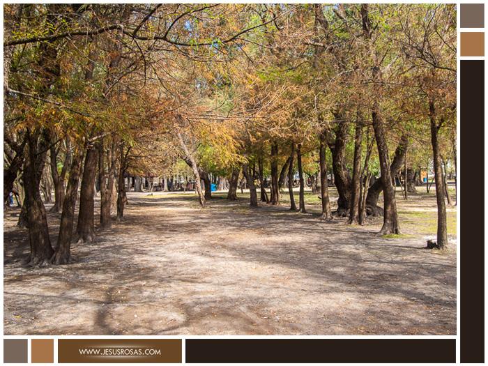 Parque-Nacional-Lago-de-Camécuaro-Group-04