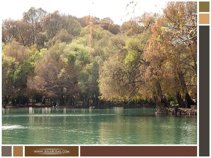 Imagen del lago en el Parque Nacional del Lago de Camécuaro en Tangancícuaro, Michoacán, México.