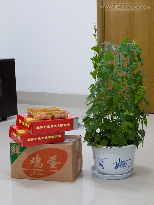 Image with three boxes and a plant. Box with eggs, two boxes of mooncakes.