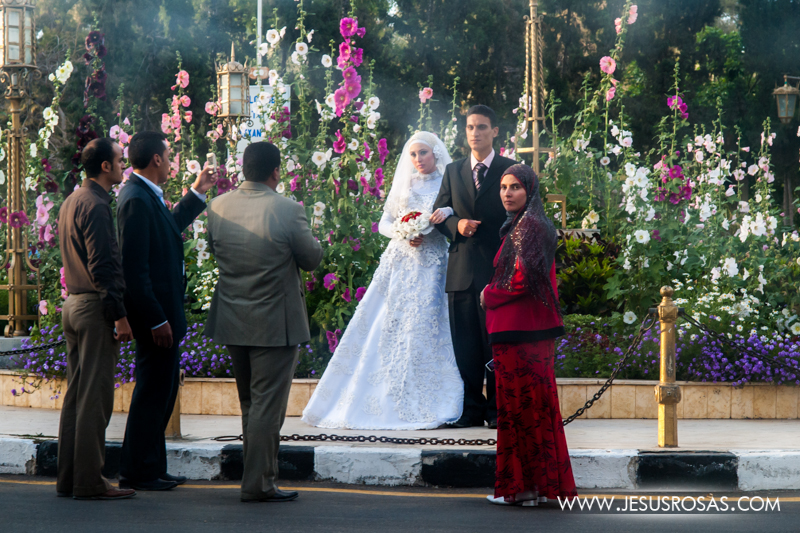 A couple recently married during a photo session with friends and relatives at the gardens of Montaza Palace. Alexandria, Egypt. 2009.