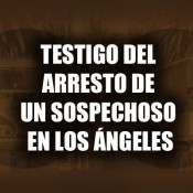 Witnessing-the-arrest-of-a-suspect-in-L.A.---Spanish