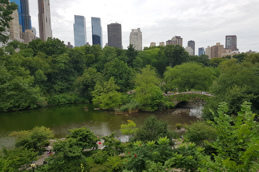 Central Park is probably one of the most famous parks thanks to many movies filmed in New York. I went there for the sake of curiousity.